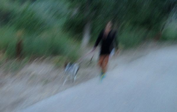 A bad dog owner whose off-leash cattle dog charged me one day and leaped onto a walker in front of me on another day.
