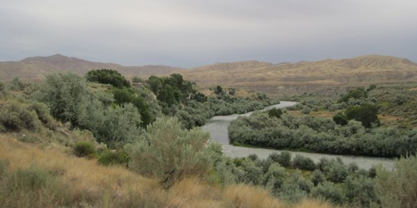 Shoshone River northeast of Cody.