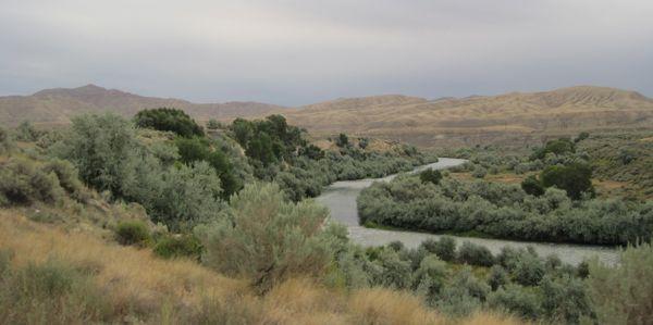 Shoshone River northeast of Cody.