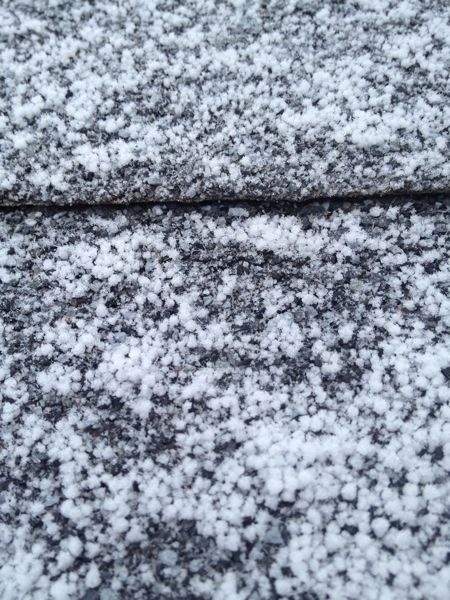We might have had a little graupel last night? I get excited about this, as only since moving to the High Plains have I witnessed and learned there was a name for this type of precipitation.