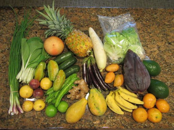Our first haul, from the Monday afternoon farmers market at Kukui Grove Shopping Center, which is in the parking lot behind the Kmart. It was the best of the three markets we attended.