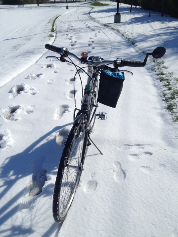 I really have never ridden in snow before, so I was not prepared for the way my bike bogged down as I hit a long patch of thicker thaw-freeze snow. I didn't have my bike in a low enough gear and I slowed too much and lost balance.