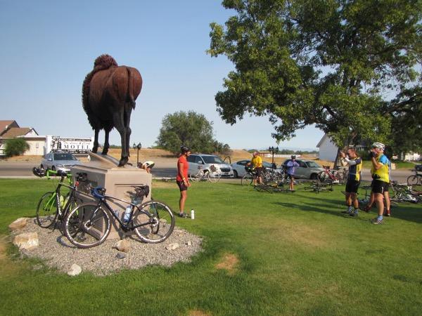 8 bison sculpture