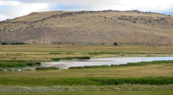 9 wetland