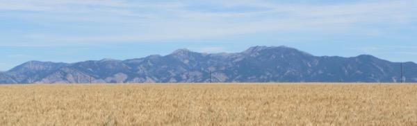 28-three-montana-elements