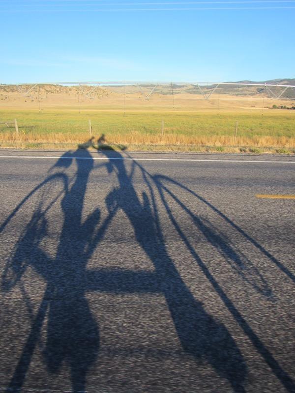 5 tandem shadow